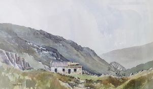 David Bellamy (British, 21st century) Watercolour drawings View of a semi-ruined cottage in