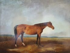 19th century school Oil on canvas Study of a horse Unsigned 56cm x 72.5cm