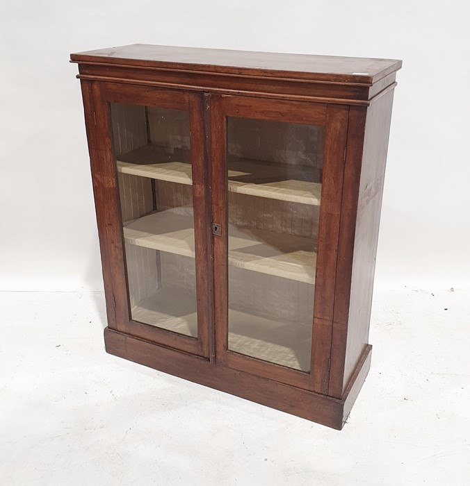Walnut display cabinet with rectangular top, two glazed doors enclosing shelves, on plinth base,