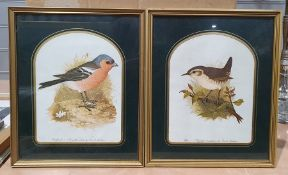 Large quantity of framed prints to include birds, fashion, etc. (1 box)