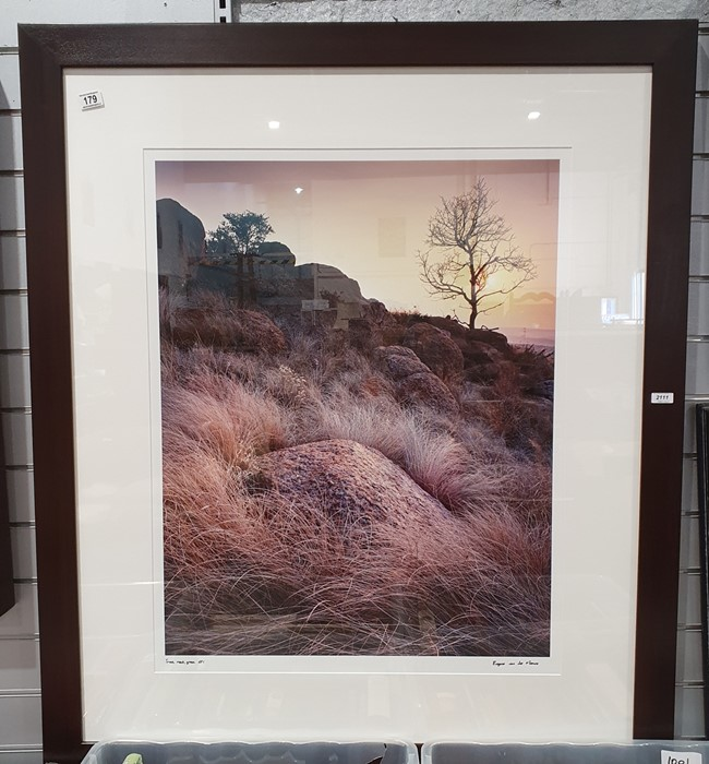 Photographic print of a rocky landscape, titled 'Tree Rock Grass', API and signed 'Eugene Von De - Image 2 of 4