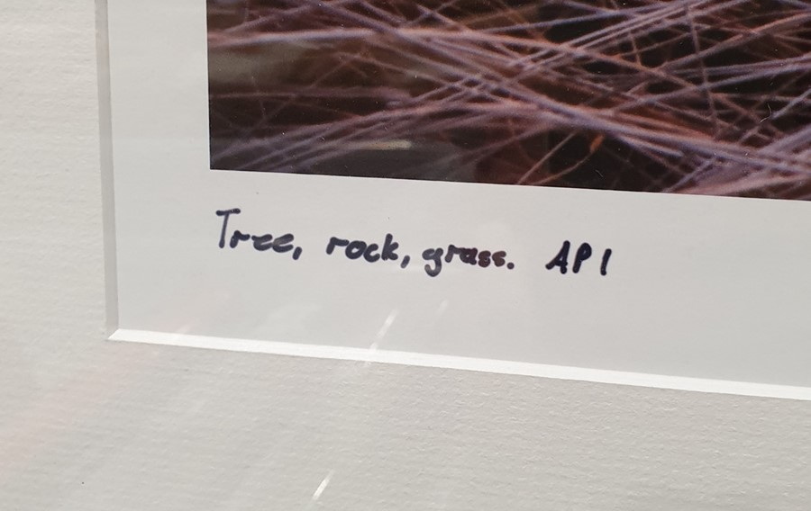 Photographic print of a rocky landscape, titled 'Tree Rock Grass', API and signed 'Eugene Von De - Image 4 of 4