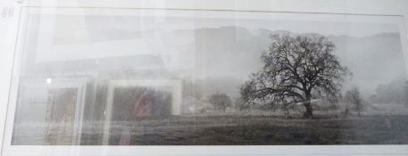 Photographic print of a landscape, titled 'Aged #2', signed indistinctly 'Martin(?)', 49cm x 70cm