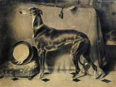 British School - late 19th/early 20th century Chalk and pastel Greyhound after Landseer signed