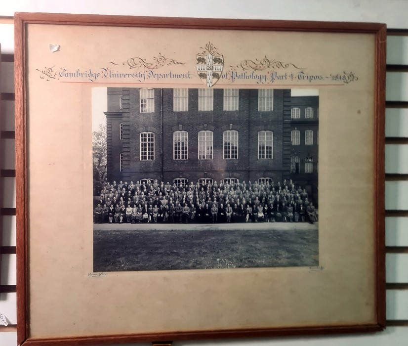 Framed photograph 'Jesus Coll. 4th May Boat 1948' Cambridge boat race with photographs, framed - Image 4 of 4