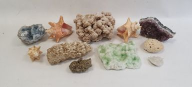 Quantity of assorted geodes, fossilsand shells(1 box)