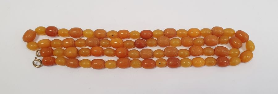 An amber graduating beaded necklace, 32g approx. 75cm long approx.