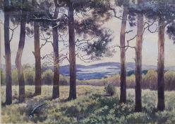 19th century school Watercolour Countryside scene, unsigned, 26cm x 40cm JK Watercolour Coastal