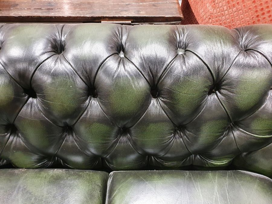 Modern green ground button-back Chesterfield sofa by Thomas LloydCondition ReportGood overall - Image 3 of 10