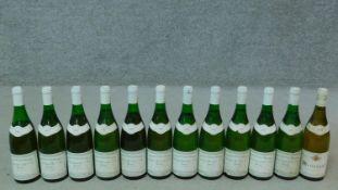 Eleven bottles of 1985 Chassagne Montrachet premier cru, domaine Vincent Gerardin and a bottle of