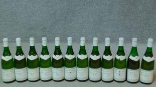 Twelve bottles of 1985 Chassagne Montrachet premier cru, domaine Vincent Gerardin.