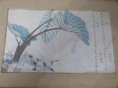 A framed and glazed Japanese antique woodblock print by Japanese ukiyo-e artist Kitagawa Utamaro.