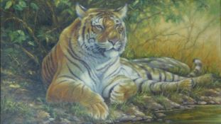 Kim Brooks (B.1936) A gilt framed oil on canvas, a Bengal Tiger reclining in the sun, signed with