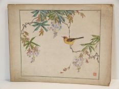 A Japanese watercolour painting of a yellow song bird in Wisteria boughs. Artists red seal mark.