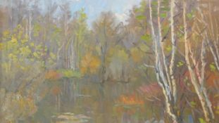 A framed oil on board, silver birches in a lakescape, signed in Russsian cyrillic, possibly N.