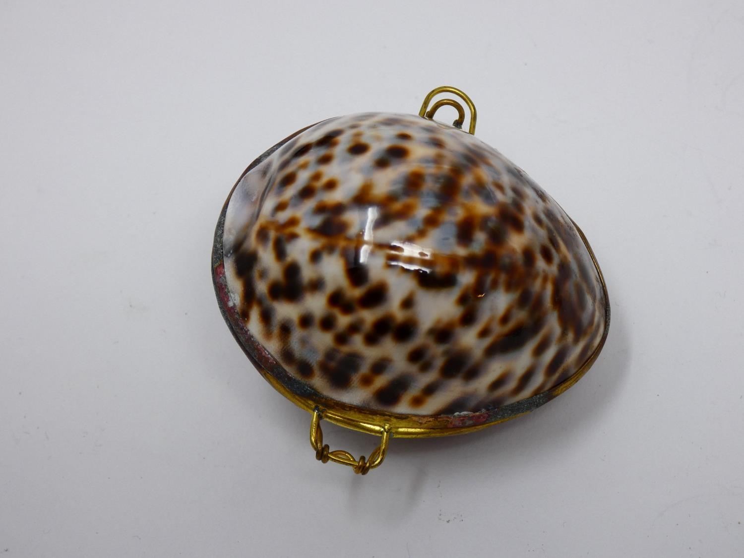 A collection of hinged sea shell trinket boxes. Four made from polished cowrie shells and one made - Image 6 of 8