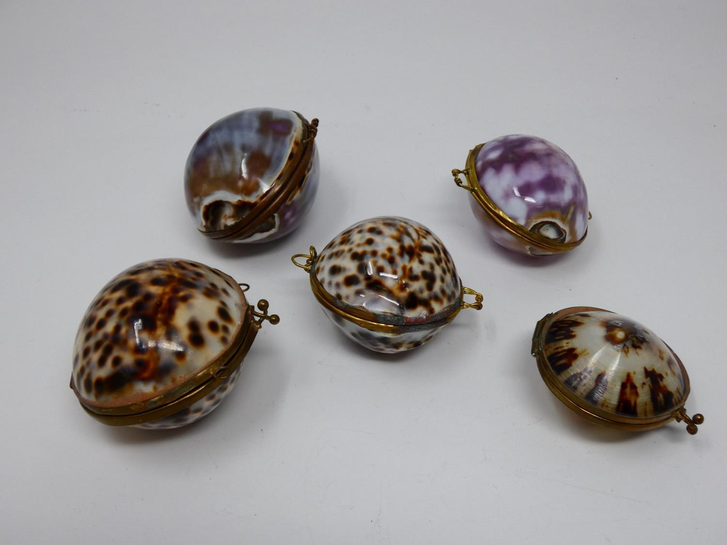 A collection of hinged sea shell trinket boxes. Four made from polished cowrie shells and one made - Image 3 of 8