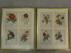 Two framed and glazed vintage botanical prints, each with four floral book plate illustration prints