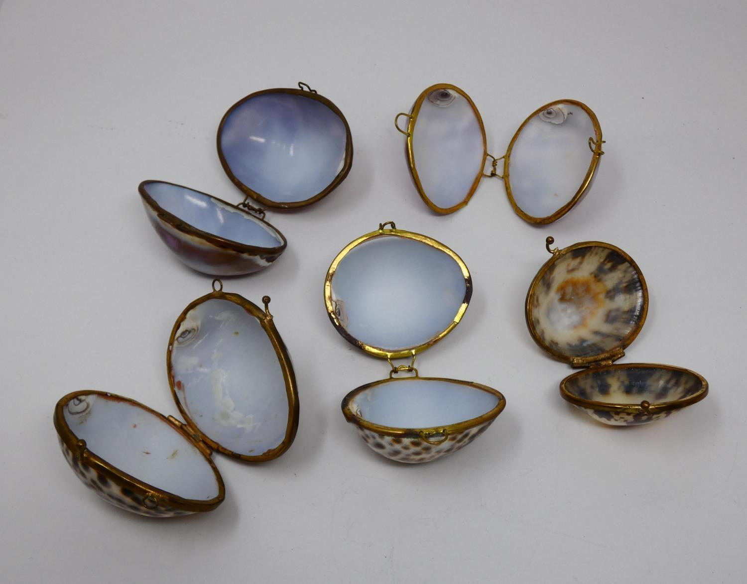 A collection of hinged sea shell trinket boxes. Four made from polished cowrie shells and one made - Image 2 of 8