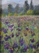 An early 20th century giltwood framed oil on board, field of Irises, indistinctly signed. 31x27cm