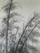 Eiichi Kotozuka (1906-1979) A framed and glazed Uchidi woodblock print, bamboo. H.52xW.38cm