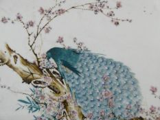 A hardwood framed and panel backed antique Chinese hand painted porcelain tile of a peacock in a