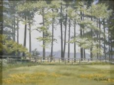 Cheryl Howeld, a framed oil on canvas, rural landscape, signed. H.43xW.54cm