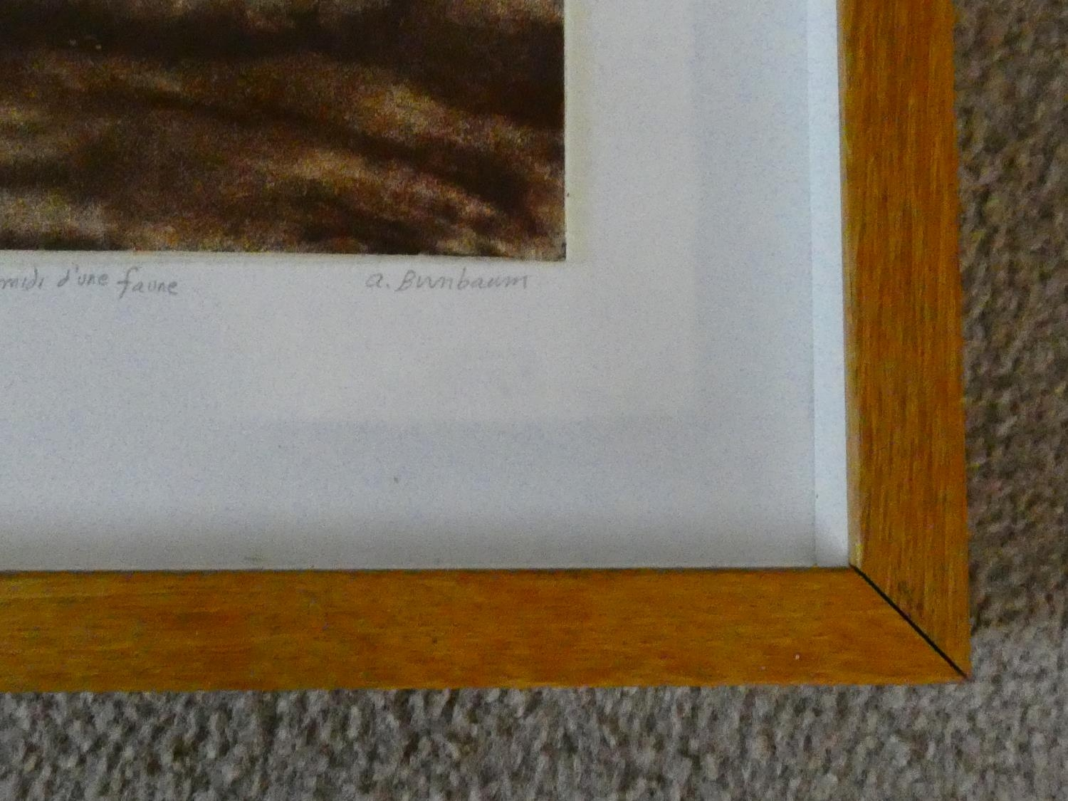 A framed and glazed limited signed artist's proof etching by American artist Aimee Birnbaum, - Image 6 of 7