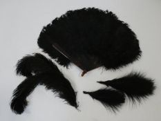 An Art Deco faux tortoiseshell and black ostrich feather fan along with black feather plumes and