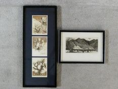 Two framed and glazed signed etchings. One of desert plants and one of desert mountains. Both