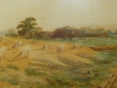 A framed glazed 19th century watercolour of a hay field at harvest. H.49 W.76cm