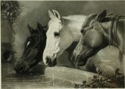 A framed antique engraving of three horses at the water trough. H.82 W.103cm