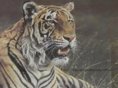Alan M. Hunt (b.1947) a signed framed and glazed limited edition print 127/950, Prince Bengal with