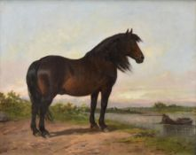 A late 19th century framed oil on canvas, horse portrait, probably Flemish, indistinctly signed. H.