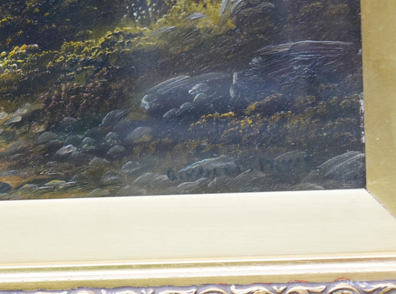 George Willis-Pryce (1866-1949), a gilt framed oil on canvas, Highland landscape, signed. H.40cm W. - Image 3 of 4