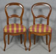 A pair of Victorian style balloon backed dining chairs on slender cabriole supports. H.89.5cm