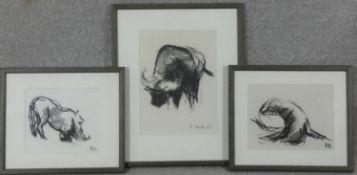 Three framed and glazed charcoal animal studies, monogrammed AE. H.38 W.31cm
