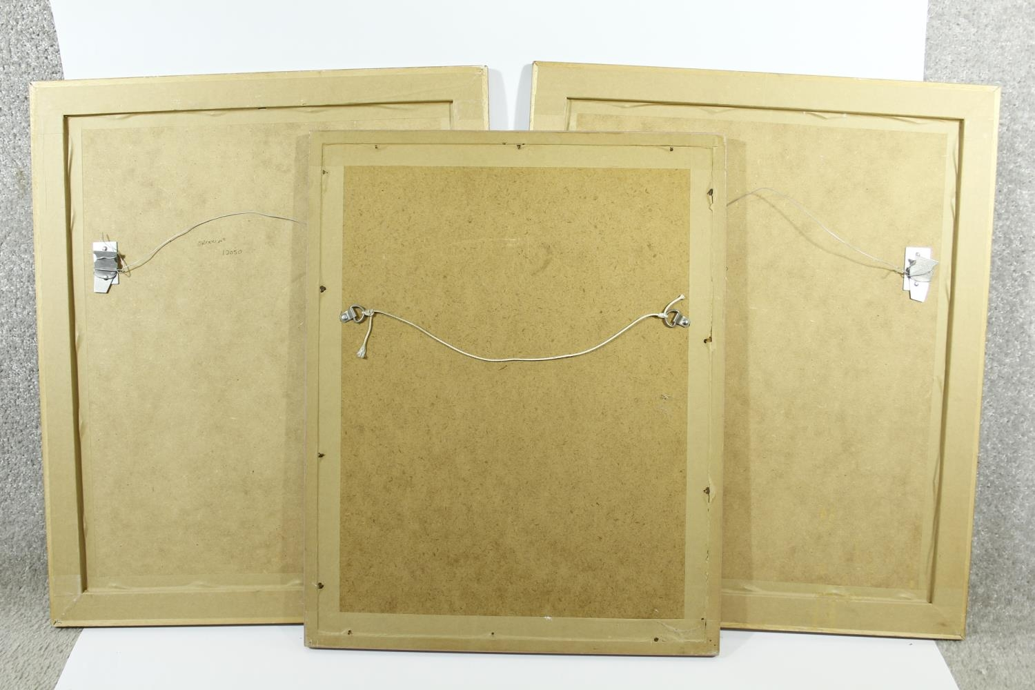 Three framed and glazed contemporary prints of coloured book plates of various species of tropical - Image 5 of 5