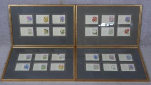 Four framed and glazed collections of antique embroidered silk floral cigarette cards. Each frame