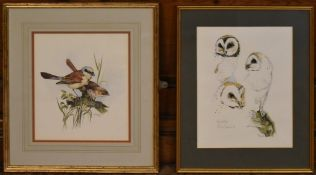 A framed and glazed limited edition etching, barn owls, indistinctly signed and numbered 93/200