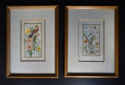 A pair of framed and glazed paintings on ivory, exotic birds and flowers. H.28cm W.21cm
