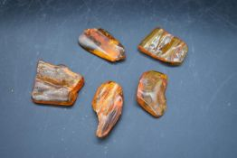 Five pieces of natural Baltic amber. L.4cm (largest piece) Weight. 51g