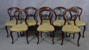 A set of eight mid Victorian mahogany balloon back dining chairs with carved splats above stuff over