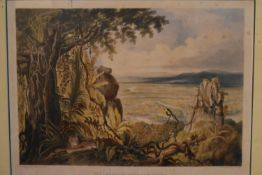 After Charles Bentley, a 19th century framed and glazed engraving, The Comuti or Taguare Rock. H.