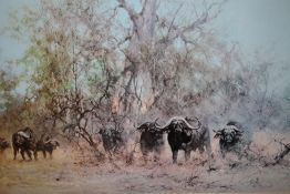 A LARGE GILT FRAMED AND GLAZED SIGNED DAVID SHEPHERD PRINT DEPICTING BUFFALO ENTITLED 'IN THE