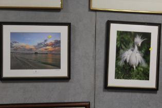 TWO MODERN FRAMED AND GLAZED PHOTOGRAPHS OF A SEASCAPE WITH PIER, AND A BIRD. BOTH SIGNED R J WILEY