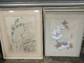 SIX FRAMED AND GLAZED WATERCOLOUR STILL LIFE STUDIES OF FLOWERS, SOME SIGNED DORA SMITH