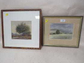 A FRAMED AND GLAZED WATERCOLOUR ENTITLED 'LOW CLOUD OVER THE MALVERNS' BY DAVID RUST TOGETHER WITH A