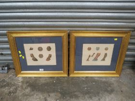 A PAIR OF FRAMED AND GLAZED EQUESTRIAN ANATOMY PLATES 'THE HORSES FOOT AND NEUROTOMY' AND 'ANATOMY