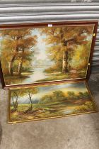 A LARGE FRAMED OIL ON CANVAS OF A WOODED RIVER LANDSCAPE SIGNED CAFEIRI, TOGETHER WITH A FRAMED